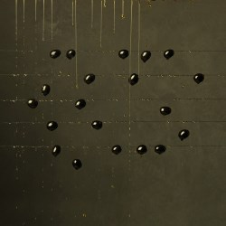 Black olives & Olive Oil, 2013